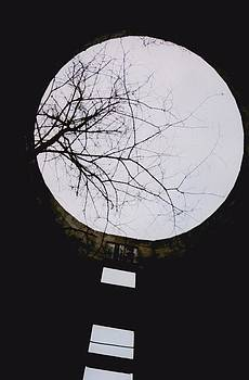 Windows to the Moon by Jennifer Choate