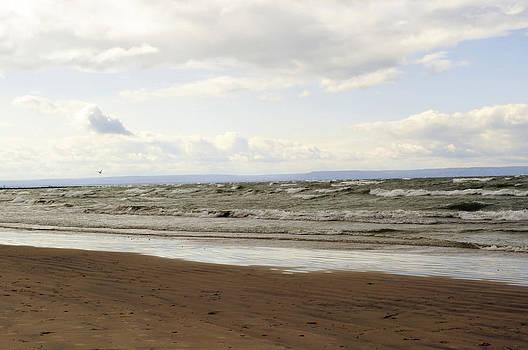 Elaine Mikkelstrup - Windy Beach