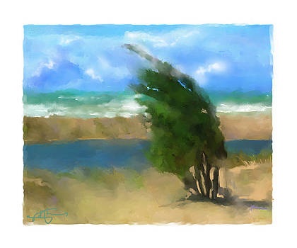 Windy Day On Lake Huron by Bob Salo