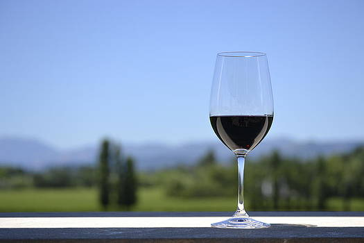 Wine by Amy Ryan