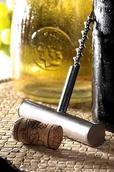 Wine Still Life II by Petr Nikl
