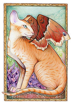 Winged Peterbald by Caroline Jamhour