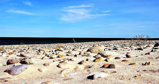 Marysue Ryan - Winter Beach