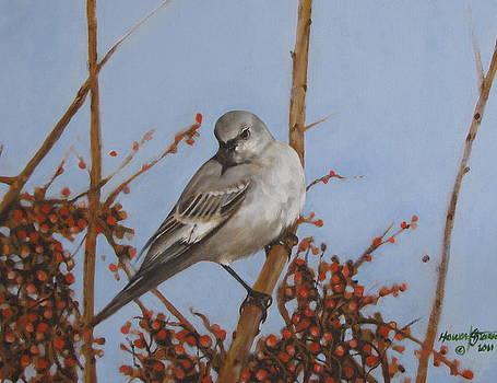 Winter Bird by Howard Stroman