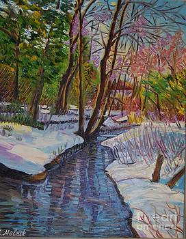 Winter creek by Efim Melnik