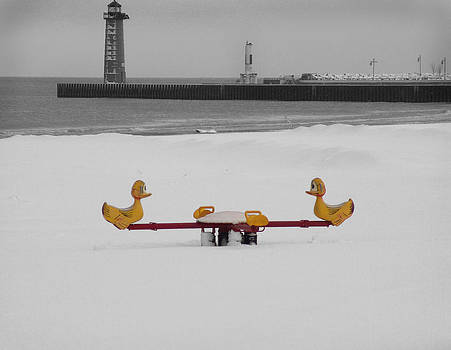 Winter Ducks on Lake Michigan by  Nick Solovey