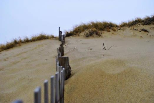 Marysue Ryan - Winter Dune