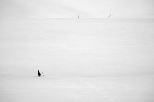 Zoran Buletic - Winter Field