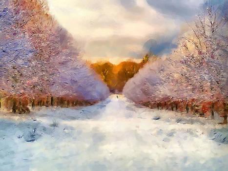 Winter forest lane by Jolande Gerritsen