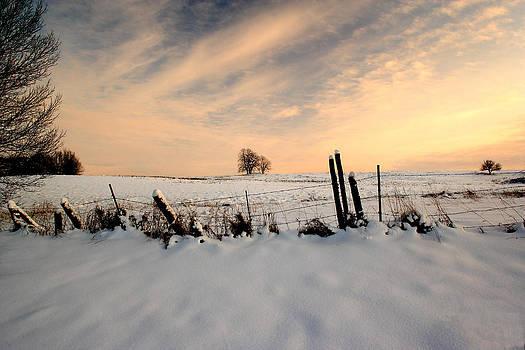 Winter by Fuad Azmat