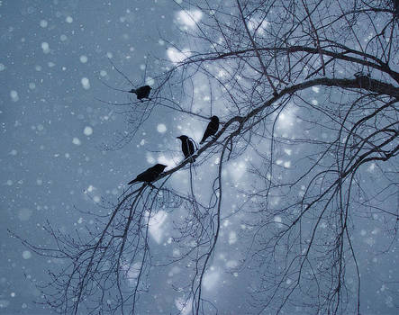 Gothicrow Images - Winter Hearts