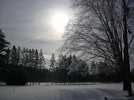 Winter Ice by Pamela Turner