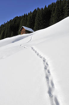 Winter landscape - footprints in the snow leading to a barn by Matthias Hauser