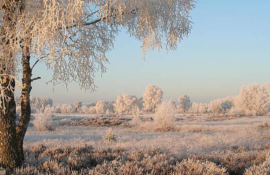 Winter Landscape by Marc Bulte