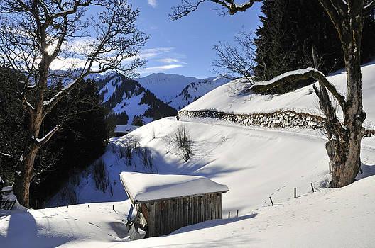 Winter landscape by Matthias Hauser