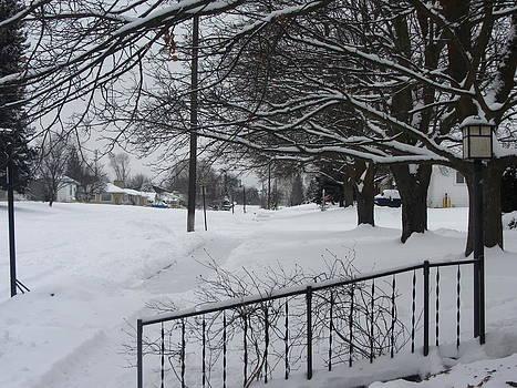 Winter by Mac Booey