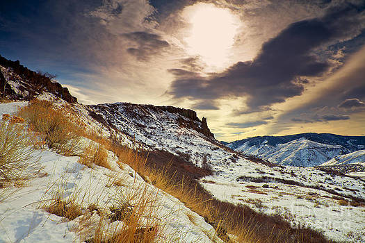 Winter Mesa by Barbara Schultheis