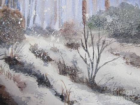 Winter Moods by Trilby Cole