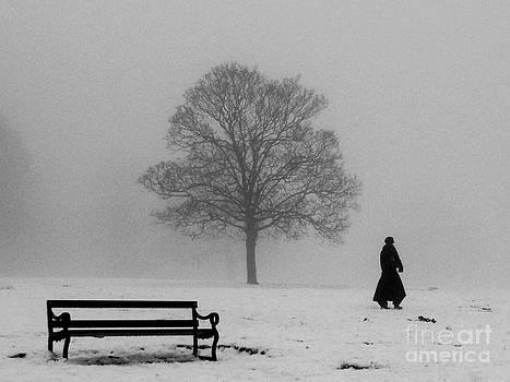 Winter Morning Walk by Karin Ubeleis-Jones