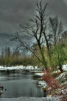 Rod Wiens - Winter on the Nicomen Slough