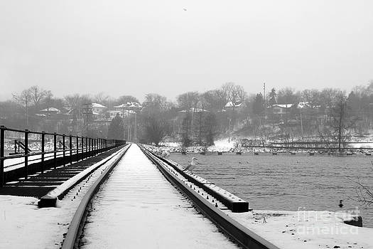 Joel Witmeyer - Winter Rails