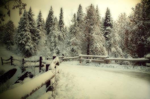 Winter season by Suzanne Blais