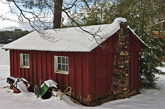 Winter Shed by Susan Leggett
