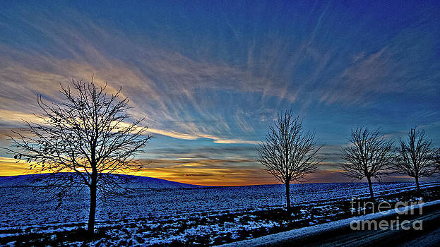 Winter sky by Nicole A Talbot