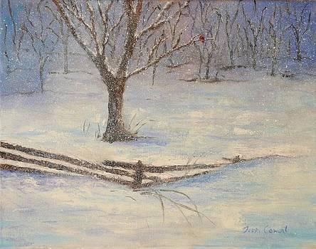 Winter Snow by Terri Cowart