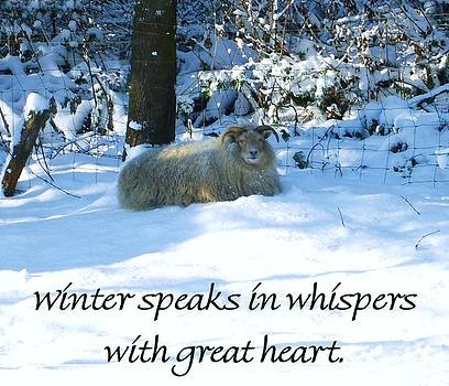 Winter Speaks In Whispers by Karen Erdmann