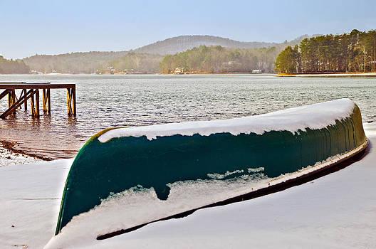 Winter Sport by Susan Leggett