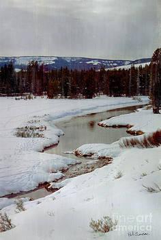Winter Stream by Bob Senesac