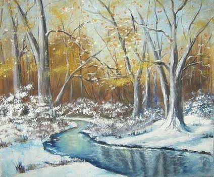 Winter stream in the woods by Jiri Chmelar