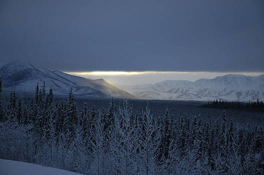 Winter Sun Alaska by John Wolf
