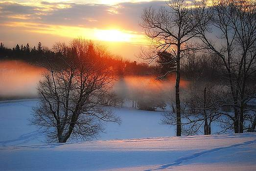 Winter Sunrise by Catherine Cirone
