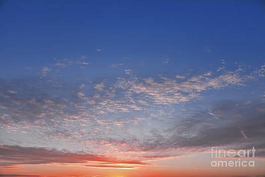 Lee-Anne Rafferty-Evans - Winter Sunset