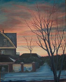 Winter Sunset by Thomas Hinkle