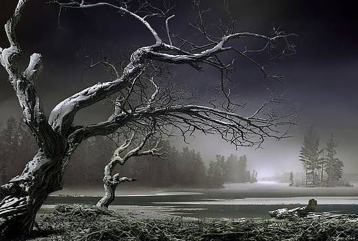 Winter Thaw by Igor Zenin