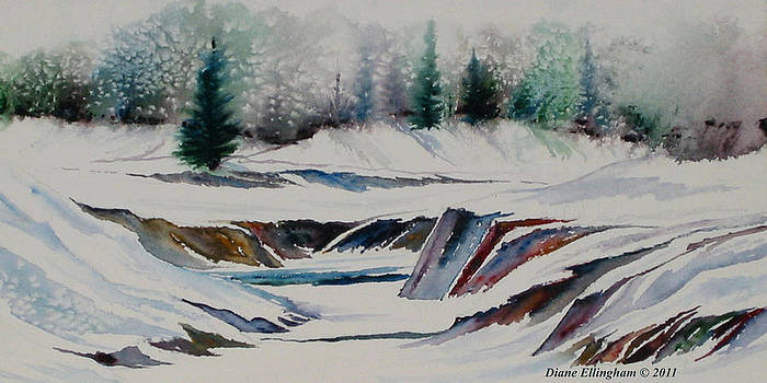 Winter Wonderland by Diane Ellingham