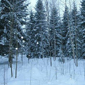 Eve Tamminen - Winter Wonderland