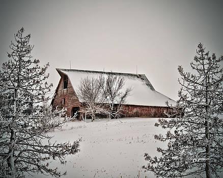 Winter Wonderland by Jeff Swanson