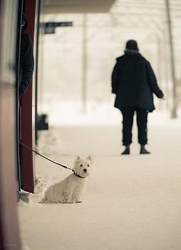 Winter World #3 by Nikolay Krusser