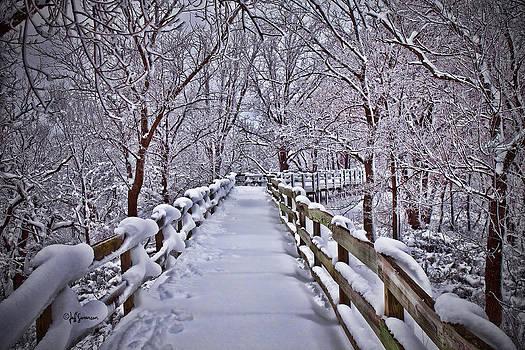 Winter's Boardwalk by Jeff Swanson