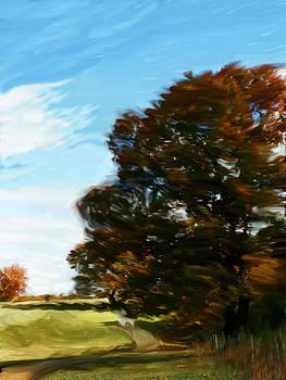 Wispy Autumn Road by Beth Dennis