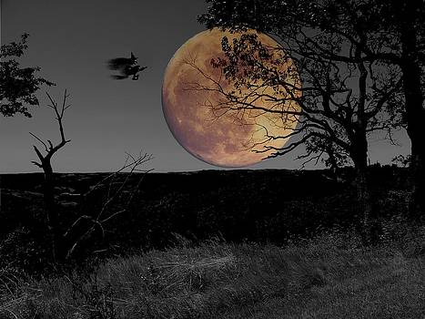 Witching to the moon by Dave Hrusecky