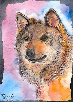 Wolf Dog by Myrna Migala