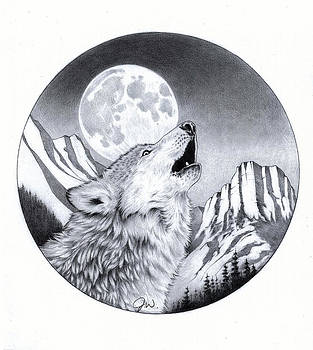Wolf by Jamie Warkentin