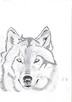 Wolf by Kristina Mladenova