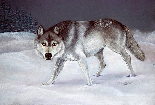 Wolf by LaReine McIlrath