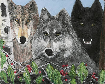 Wolf Pack by Charlie Harris